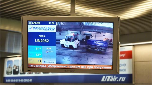 Vnukovo bagazh monitor
